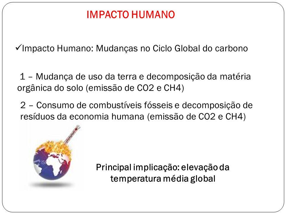 Principal implicação: elevação da temperatura média global