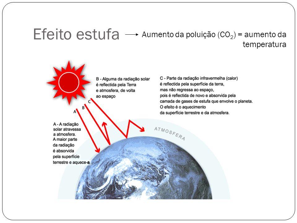 Efeito estufa Aumento da poluição (CO2) = aumento da temperatura