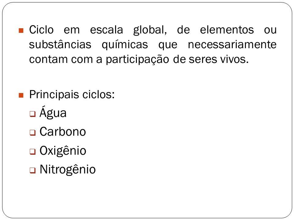 Água Carbono Oxigênio Nitrogênio