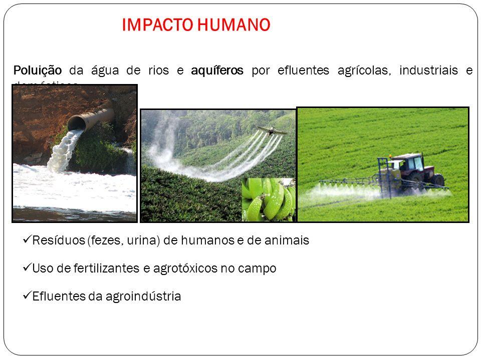 IMPACTO HUMANO Poluição da água de rios e aquíferos por efluentes agrícolas, industriais e domésticos.