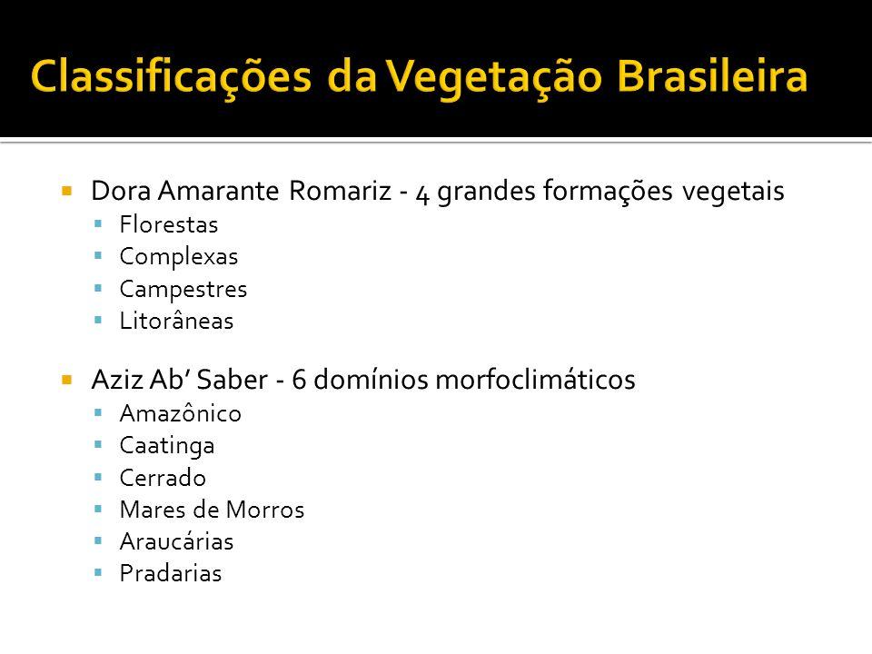 Classificações da Vegetação Brasileira