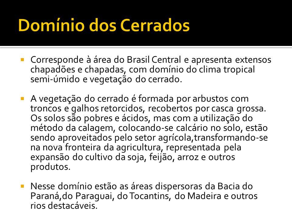 Domínio dos Cerrados