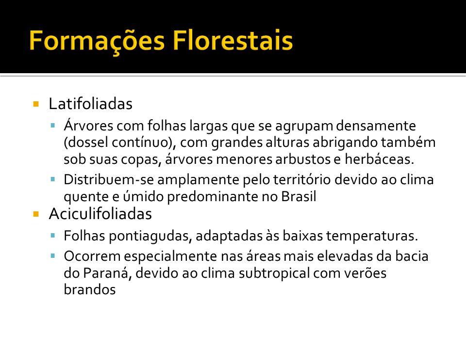 Formações Florestais Latifoliadas Aciculifoliadas