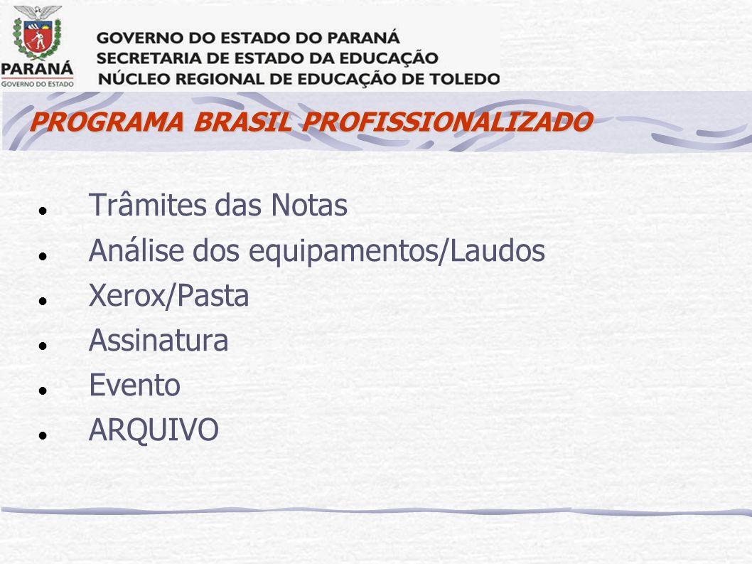 PROGRAMA BRASIL PROFISSIONALIZADO