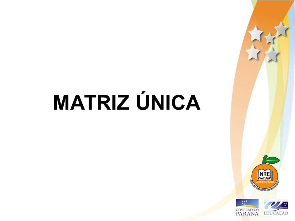 MATRIZ ÚNICA