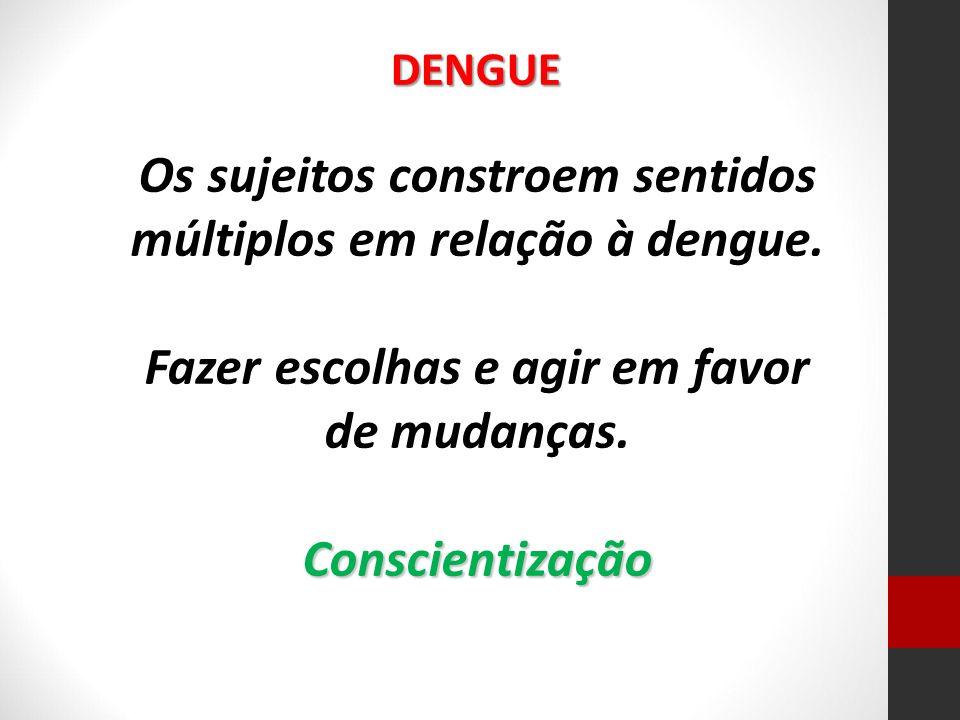 Os sujeitos constroem sentidos múltiplos em relação à dengue.