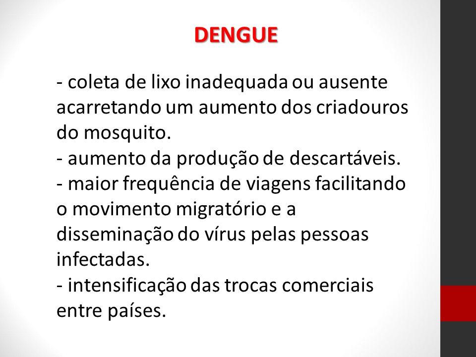 DENGUE - coleta de lixo inadequada ou ausente acarretando um aumento dos criadouros do mosquito. - aumento da produção de descartáveis.