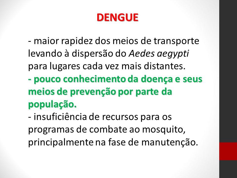DENGUE - maior rapidez dos meios de transporte levando à dispersão do Aedes aegypti para lugares cada vez mais distantes.