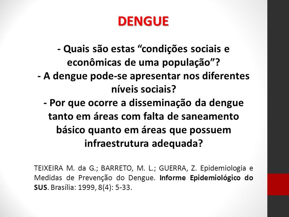 DENGUE - Quais são estas condições sociais e econômicas de uma população - A dengue pode-se apresentar nos diferentes níveis sociais