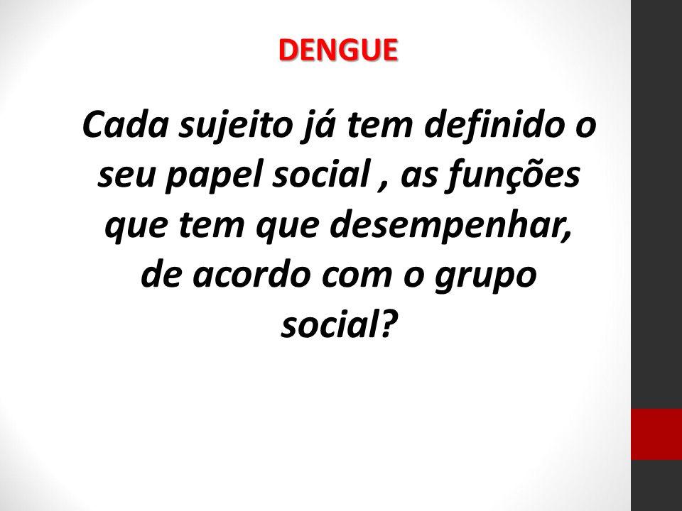 DENGUE Cada sujeito já tem definido o seu papel social , as funções que tem que desempenhar, de acordo com o grupo social