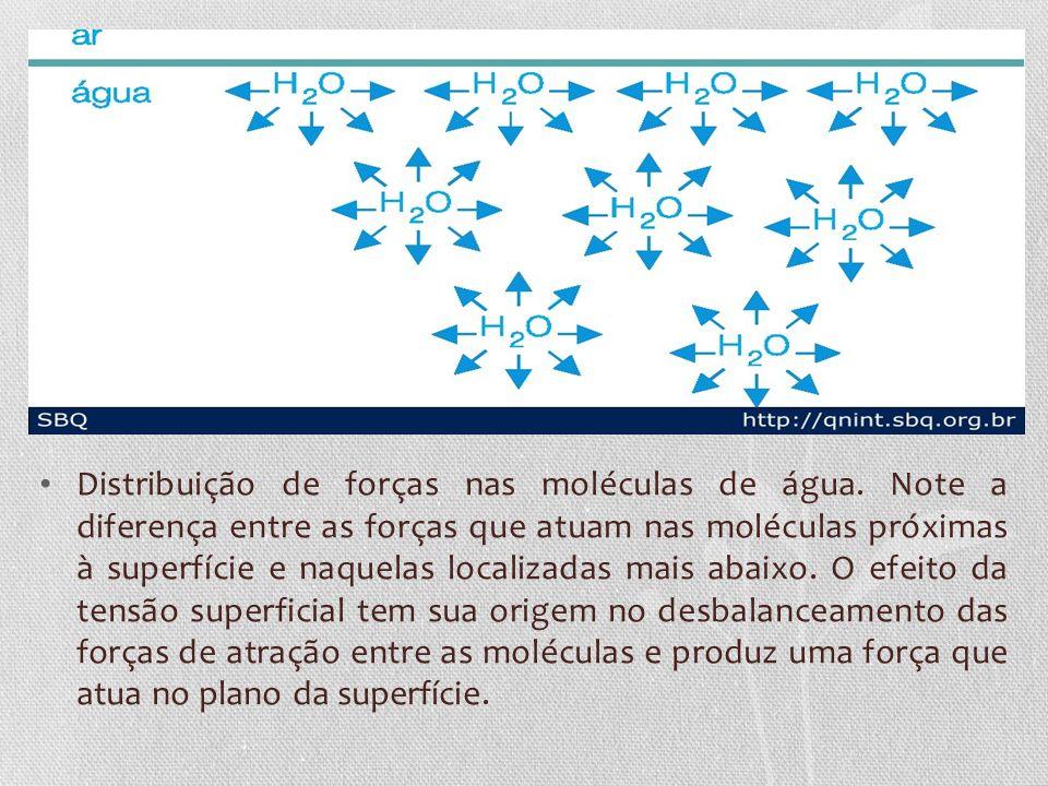 Distribuição de forças nas moléculas de água