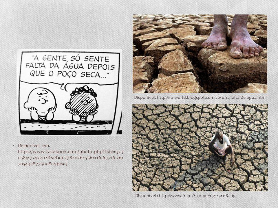 Disponível: http://fp-world.blogspot.com/2010/12/falta-de-agua.html