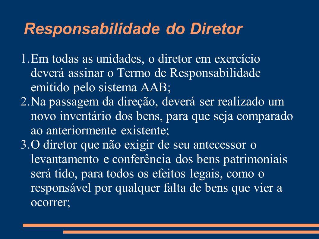 Responsabilidade do Diretor