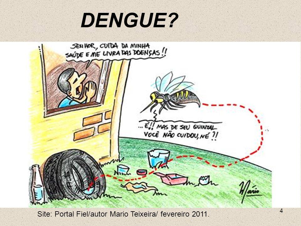 DENGUE Site: Portal Fiel/autor Mario Teixeira/ fevereiro 2011.
