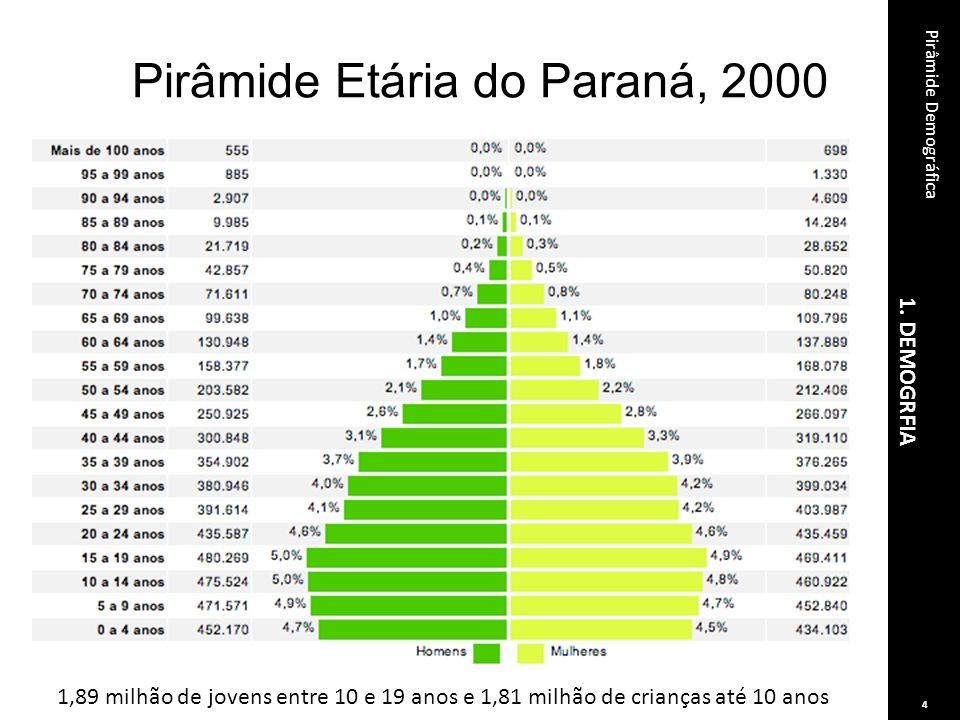 Pirâmide Etária do Paraná, 2000