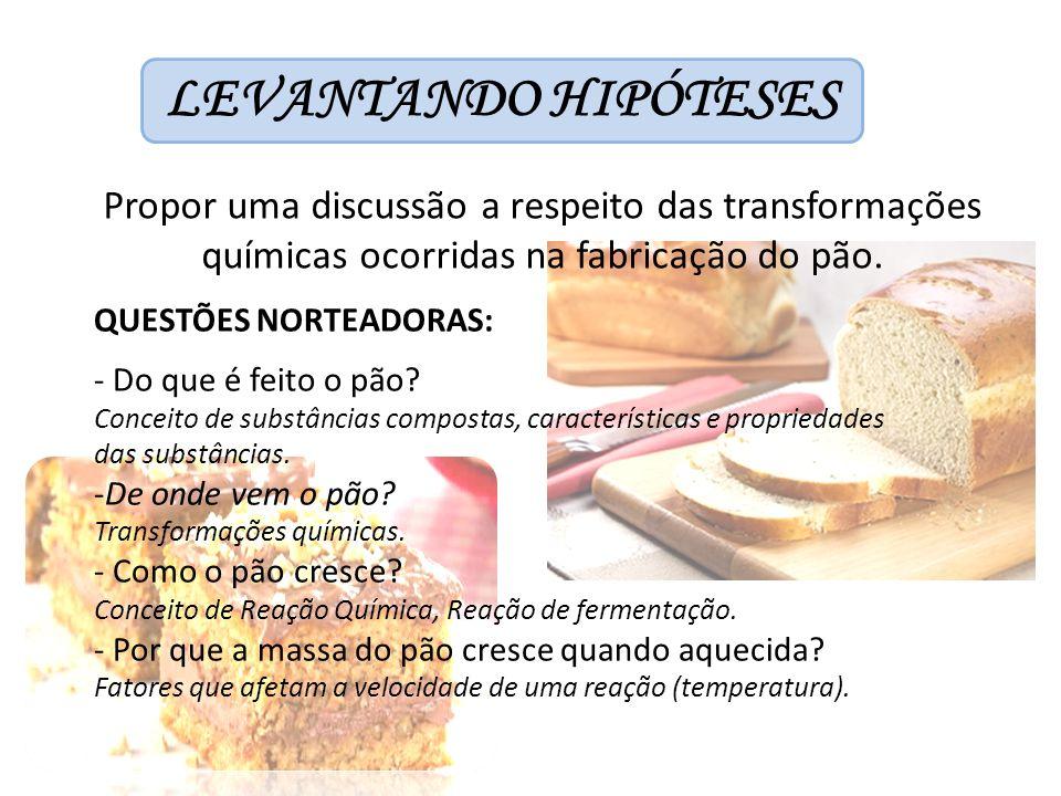 LEVANTANDO HIPÓTESES Propor uma discussão a respeito das transformações químicas ocorridas na fabricação do pão.