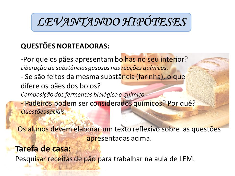 LEVANTANDO HIPÓTESES Tarefa de casa: QUESTÕES NORTEADORAS: