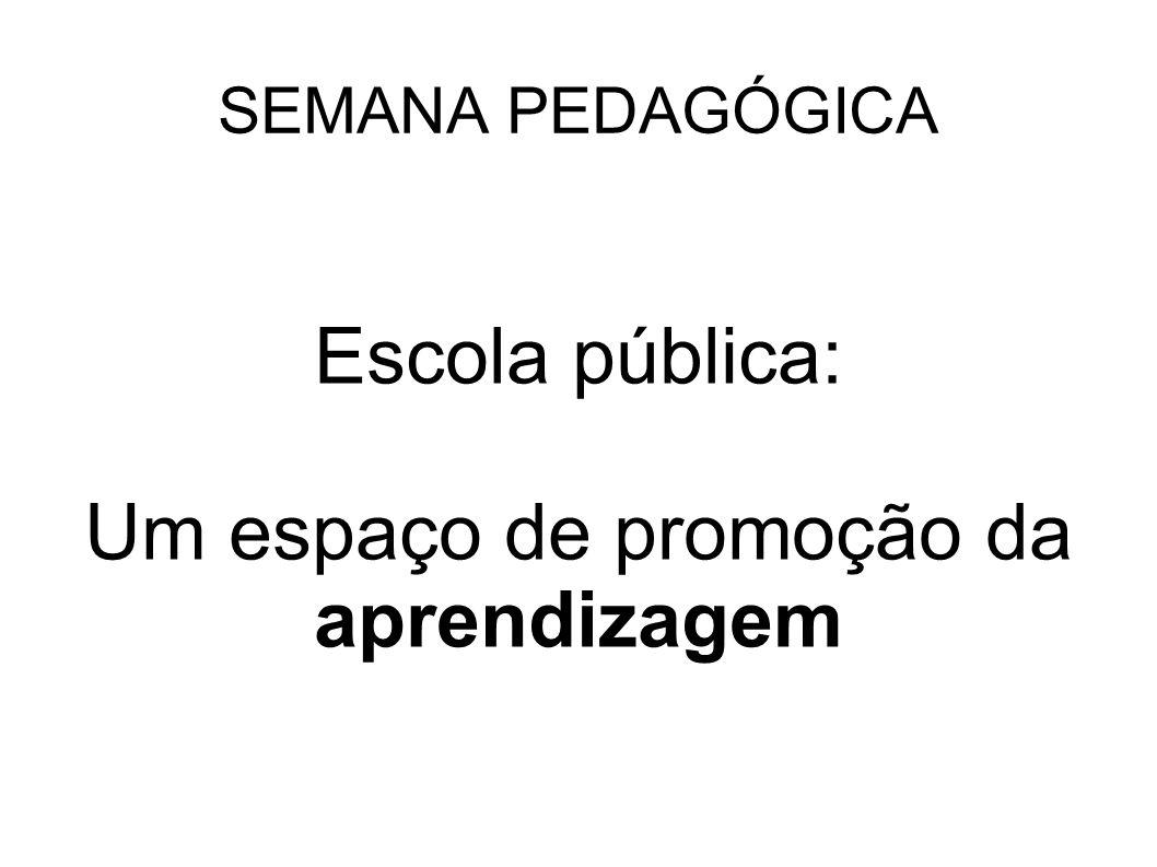 Escola pública: Um espaço de promoção da aprendizagem