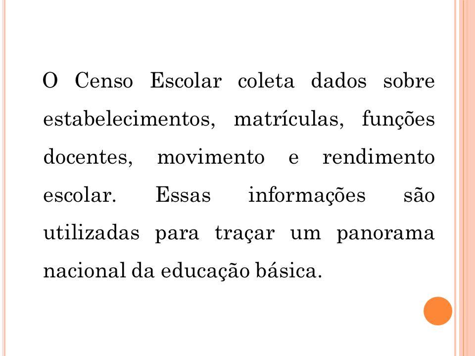 O Censo Escolar coleta dados sobre estabelecimentos, matrículas, funções docentes, movimento e rendimento escolar.