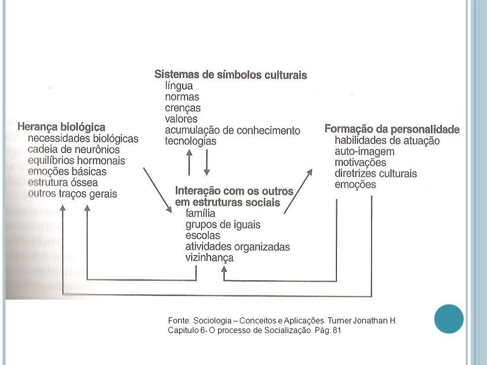 Fonte: Sociologia – Conceitos e Aplicações. Turner Jonathan H