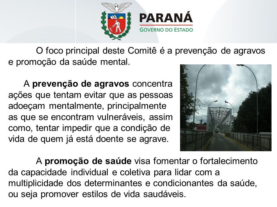 O foco principal deste Comitê é a prevenção de agravos e promoção da saúde mental.