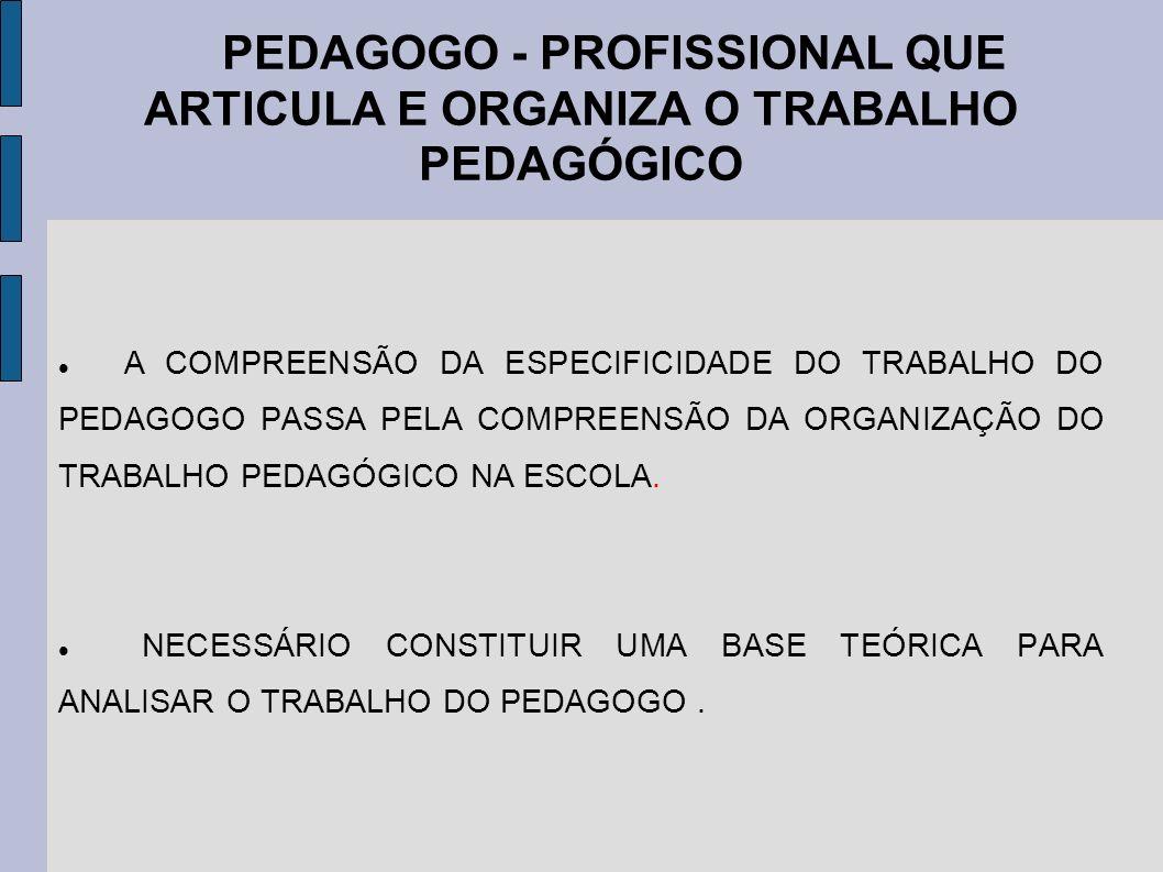 PEDAGOGO - PROFISSIONAL QUE ARTICULA E ORGANIZA O TRABALHO PEDAGÓGICO
