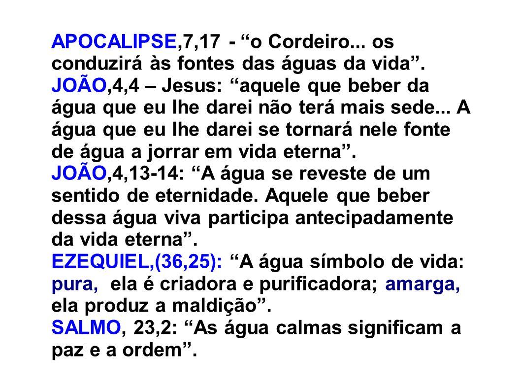 APOCALIPSE,7,17 - o Cordeiro