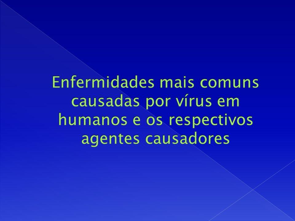 Enfermidades mais comuns causadas por vírus em humanos e os respectivos agentes causadores