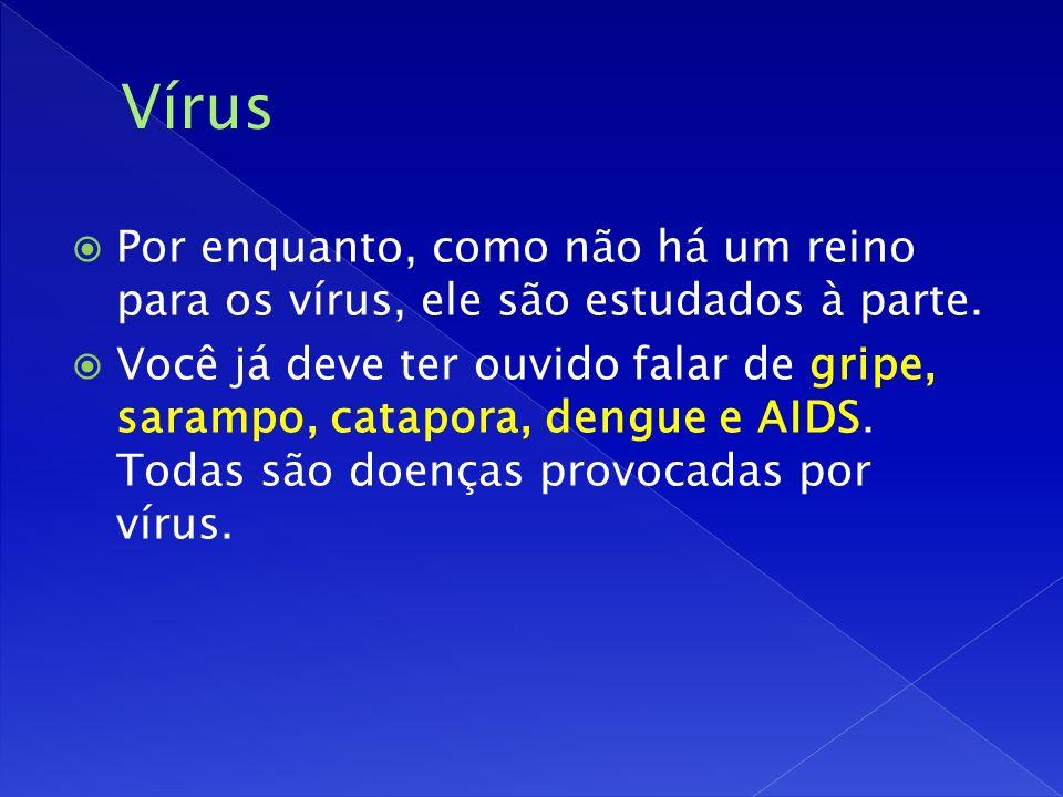 Vírus Por enquanto, como não há um reino para os vírus, ele são estudados à parte.