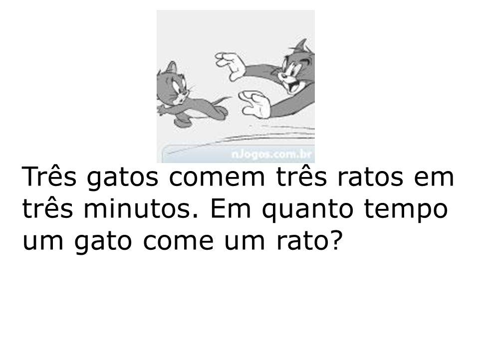 Três gatos comem três ratos em três minutos