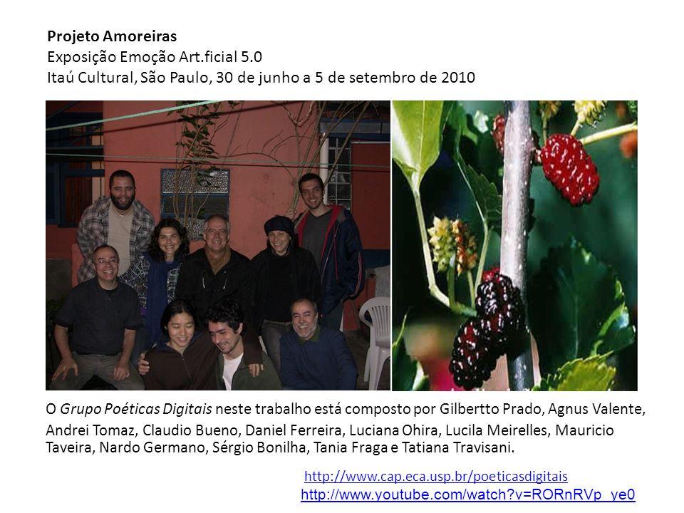 Projeto Amoreiras. Exposição Emoção Art.ficial 5.0. Itaú Cultural, São Paulo, 30 de junho a 5 de setembro de 2010.