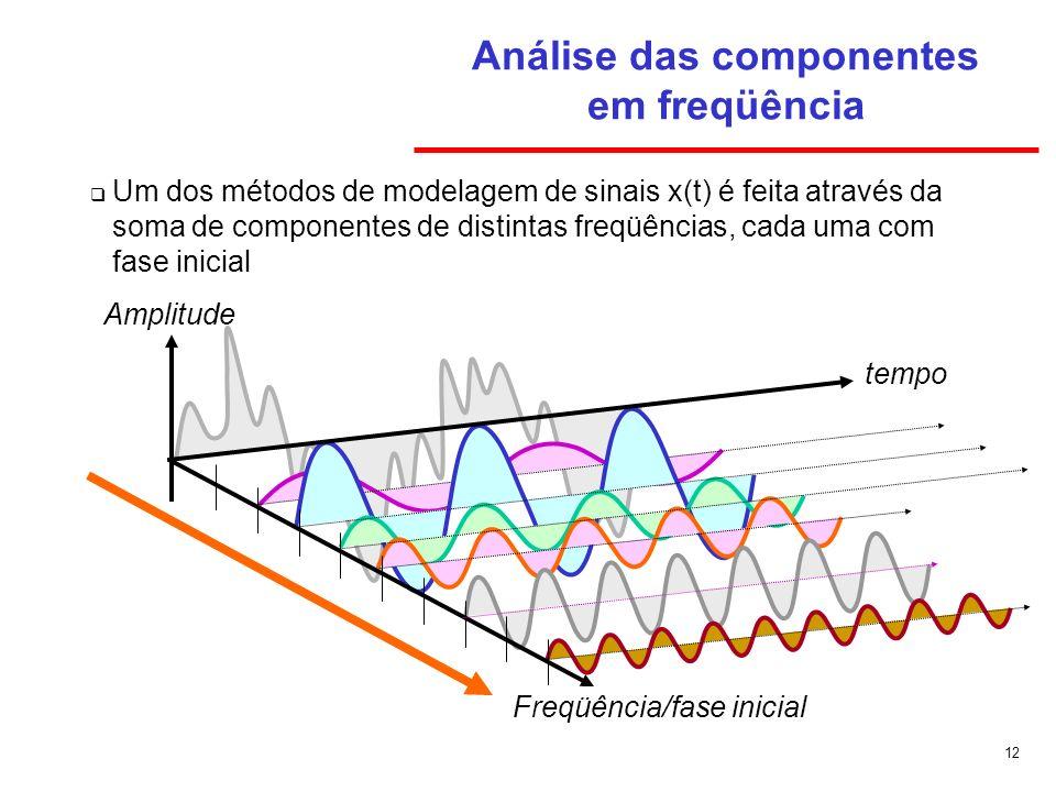 Análise das componentes em freqüência