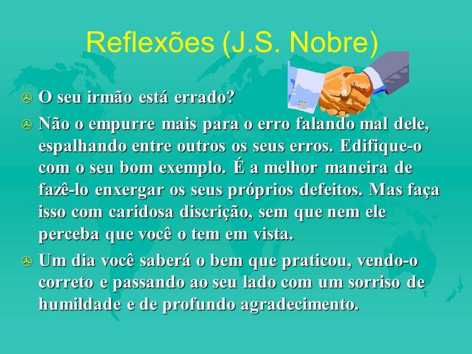 Reflexões (J.S. Nobre) O seu irmão está errado