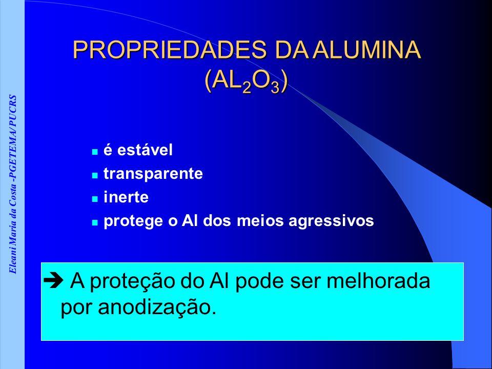 Eleani Maria da Costa -PGETEMA/ PUCRS