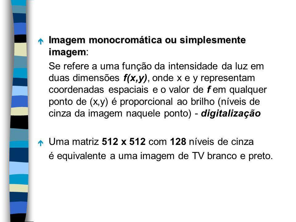 Imagem monocromática ou simplesmente imagem: