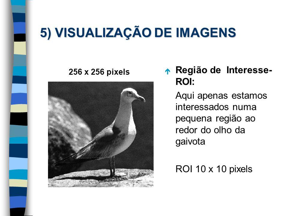 5) VISUALIZAÇÃO DE IMAGENS