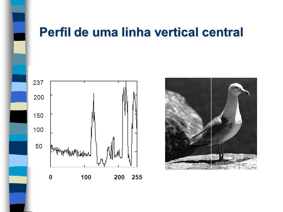 Perfil de uma linha vertical central