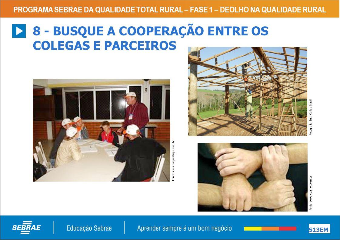 8 - BUSQUE A COOPERAÇÃO ENTRE OS COLEGAS E PARCEIROS