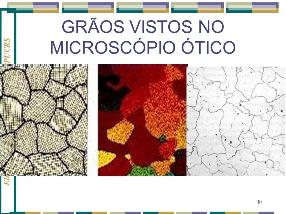 GRÃOS VISTOS NO MICROSCÓPIO ÓTICO
