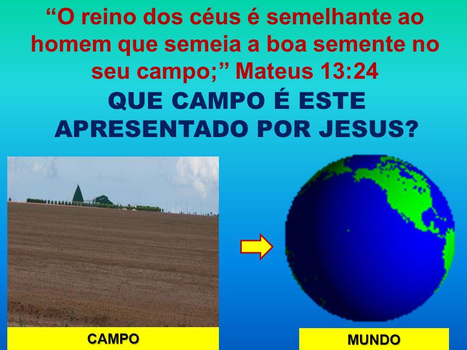 QUE CAMPO É ESTE APRESENTADO POR JESUS