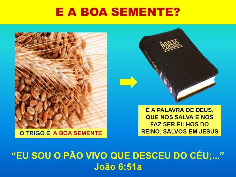 EU SOU O PÃO VIVO QUE DESCEU DO CÉU;... João 6:51a