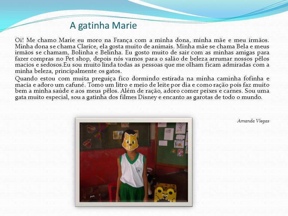 A gatinha Marie