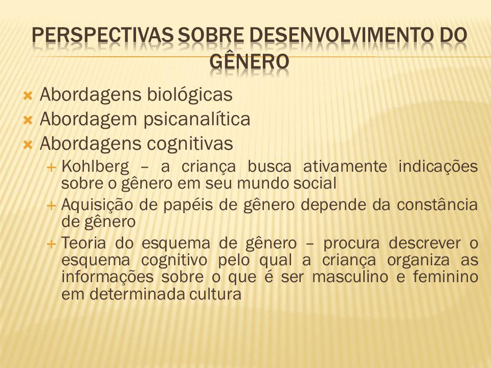 perspectivas sobre desenvolvimento do gênero