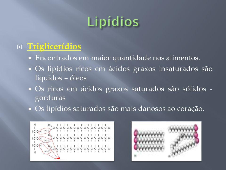 Lipídios Triglicerídios Encontrados em maior quantidade nos alimentos.