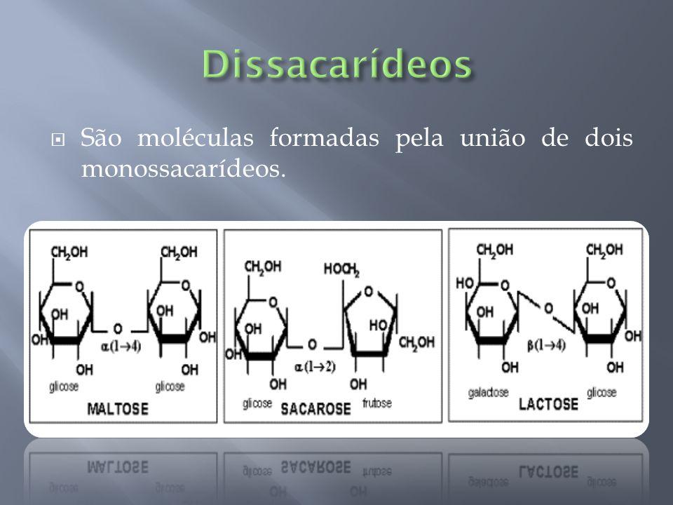 Dissacarídeos São moléculas formadas pela união de dois monossacarídeos.