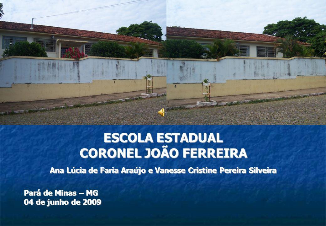 Ana Lúcia de Faria Araújo e Vanesse Cristine Pereira Silveira