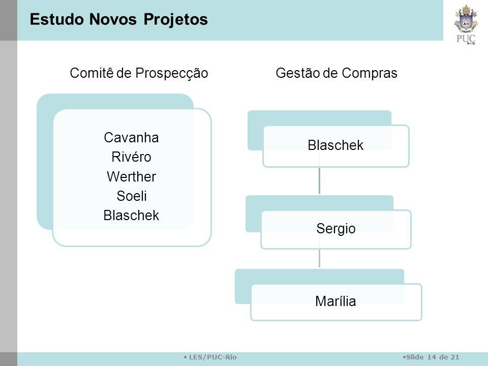Estudo Novos Projetos Comitê de Prospecção Gestão de Compras Cavanha