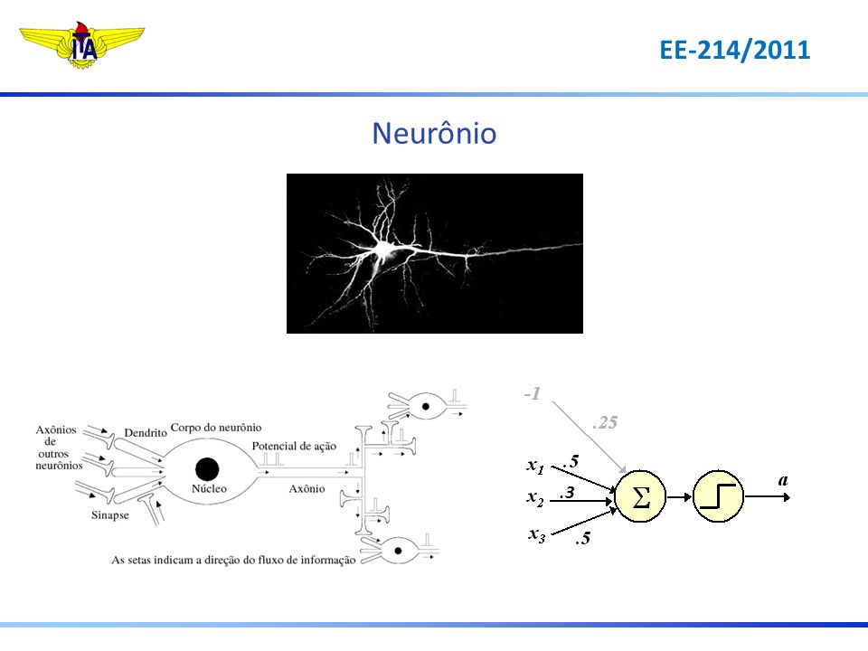 Neurônio .3