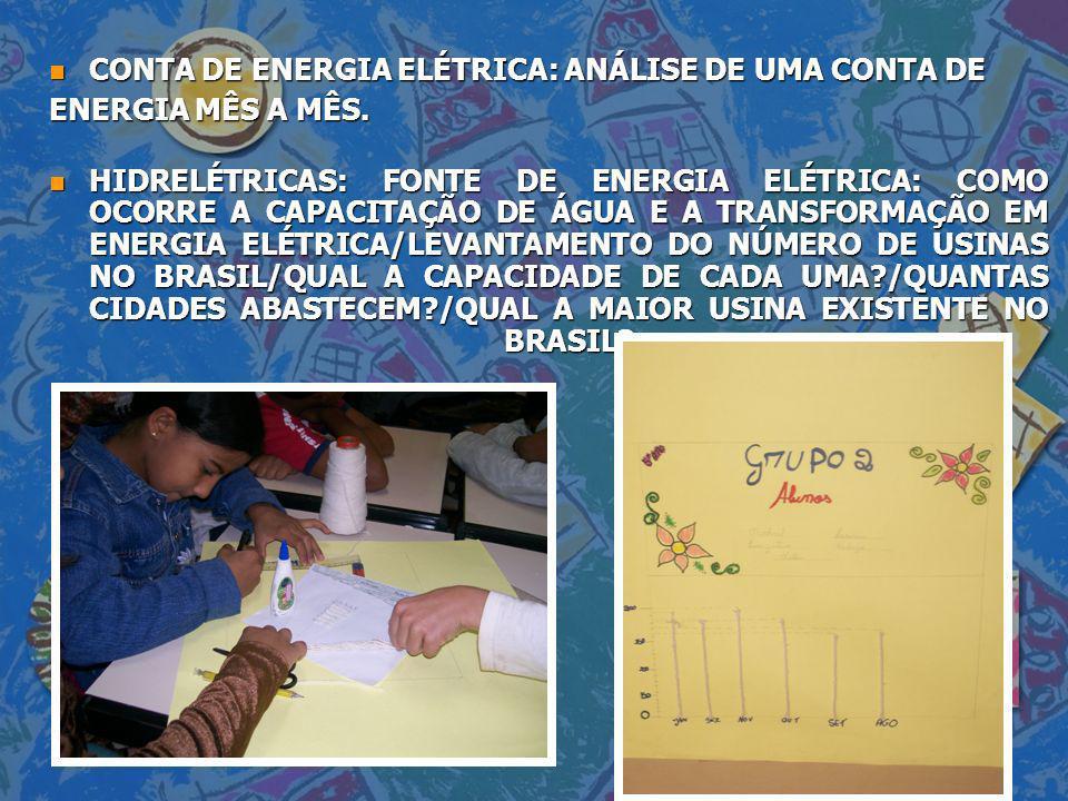 CONTA DE ENERGIA ELÉTRICA: ANÁLISE DE UMA CONTA DE