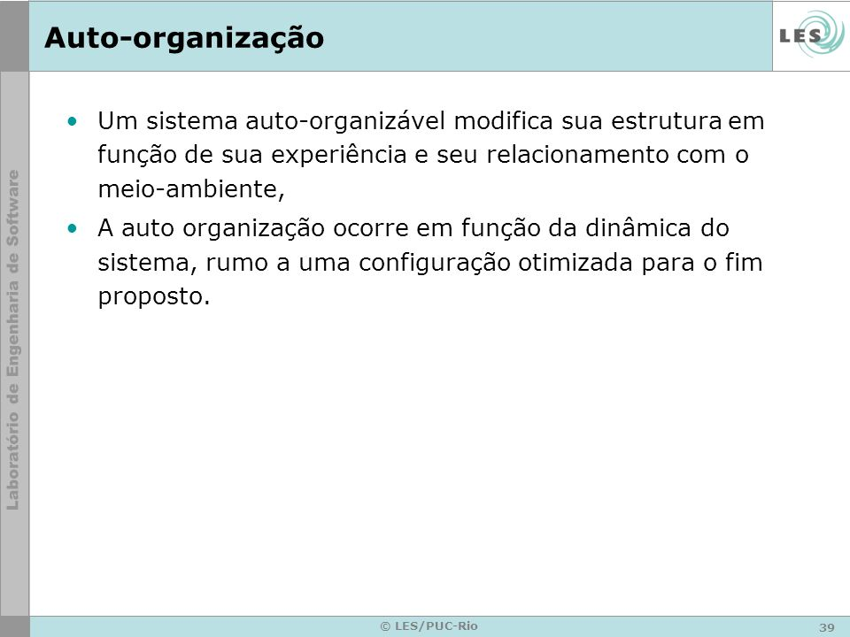 Auto-organizaçãoUm sistema auto-organizável modifica sua estrutura em função de sua experiência e seu relacionamento com o meio-ambiente,